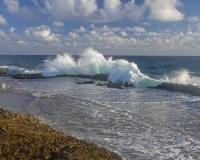 Boca_Grandi5_March02_lcd