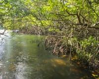 Balashi_Spanish_Lagoon6_lcd