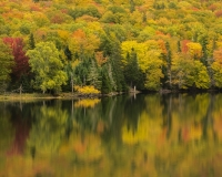 Lake_O_Law_Margaree_Valley1_lcd