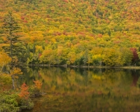 Lake_O_Law_Margaree_Valley2_lcd