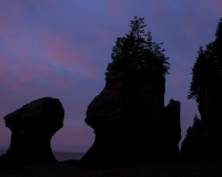 Hopewell_Rocks8_lcd