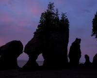 Hopewell_Rocks9_lcd
