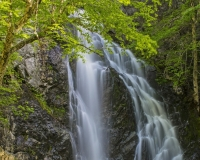 Laverty_Falls4_lcd