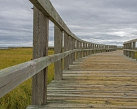 Bouctouche_Dunes12_lcd