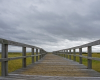 Bouctouche_Dunes4_lcd