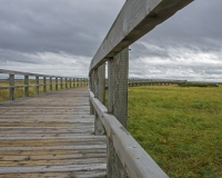 Bouctouche_Dunes5_lcd