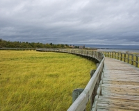 Bouctouche_Dunes6_lcd