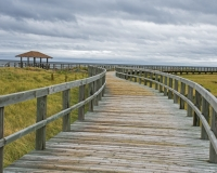 Bouctouche_Dunes7_lcd