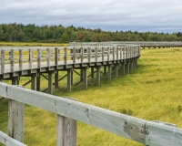 Bouctouche_Dunes9_lcd