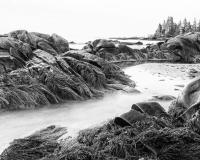 Green_Bay_Beach1BW_lcd