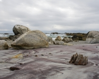 Harbour_Rocks_Trail10_lcd