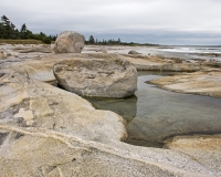 Harbour_Rocks_Trail13_lcd