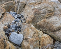 Harbour_Rocks_Trail5_lcd