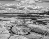 Clam Harbour Beach, NS B&W #1