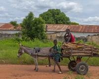 Donkey_Cart1_lcd