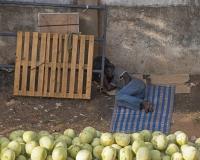 Watermelon_Vendor_Asleep1_lcd